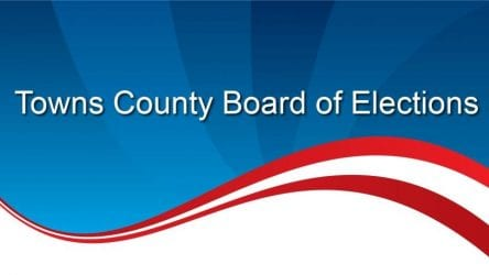 Towns County Elections