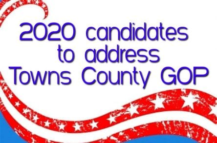 2020 candidates Towns County